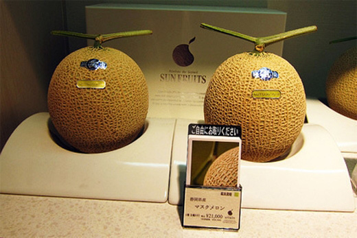 1 quả dưa lưới ruột vàng của Nhật có thể bán với giá lên tới 300 USD.