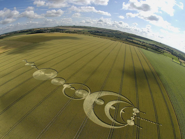 Những vòng tròn bí ẩn trên cánh đồng