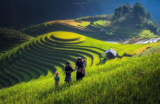 Sững sờ trước những ruộng bậc thang đẹp nhất trên khắp thế giới