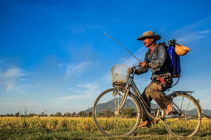 20 hình ảnh tuyệt đẹp về Việt Nam