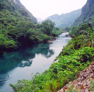 Vườn quốc gia Phong Nha - Kẻ Bàng: Kỳ quan đệ nhất động