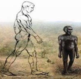 Người tí hon cổ đại từng có hình dáng cao lớn