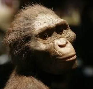 24/11/1974 - Lucy người vượn phương Nam được phát hiện tại Ethiopia