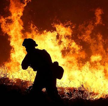 NASA dùng 200 vệ tinh để phát hiện cháy rừng vào năm 2018