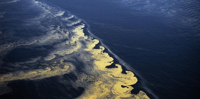 """Số lượng """"vùng chết"""" dưới biển ngày càng nhiều"""