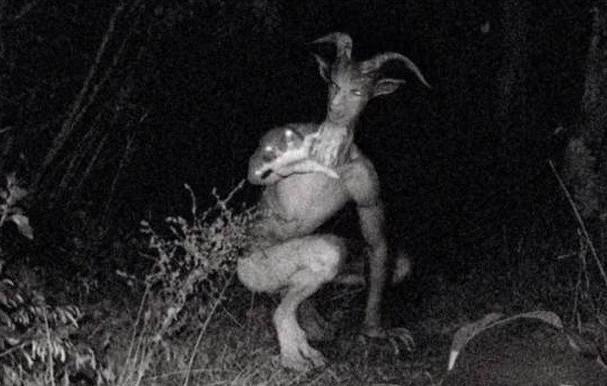 """Xôn xao trước những hình ảnh về """"quái vật Người Dê"""" bí ẩn"""