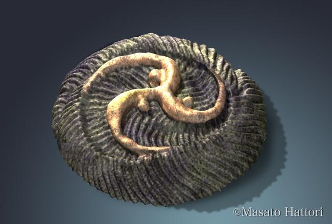 Sinh vật bí ẩn 550 triệu tuổi tiết lộ quá trình tiến hóa kỳ lạ trên Trái đất