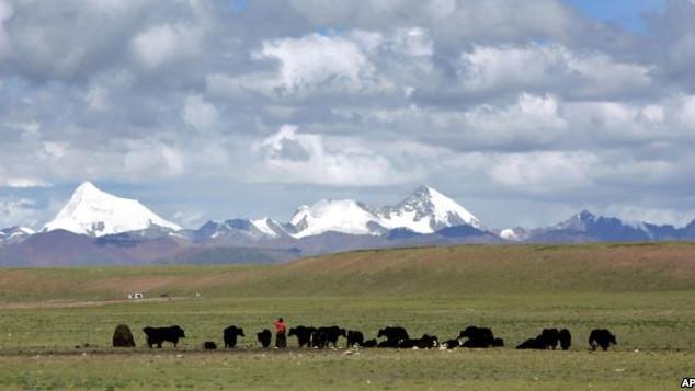 Băng tan ở Tây Tạng và mối nguy đối với Việt Nam