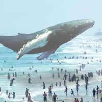 Tìm hiểu về Magic Leap: Khi hình ảnh 3D ảo được chiếu thẳng vào mắt