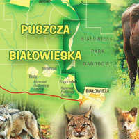 Vườn quốc gia Belovezhskaya Pushcha - Belarus