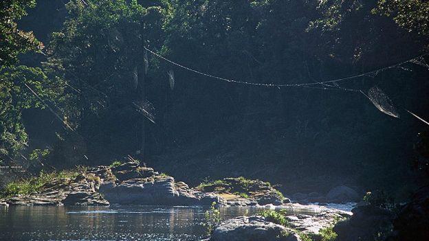 Mạng nhện lớn nhất thế giới có thể bắc qua một con sông