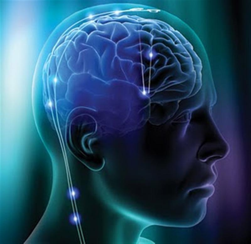 10 sự thật gây sốc về bộ não con người