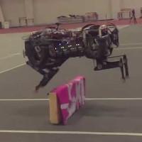 7 robot sinh ra chỉ để làm những nhiệm vụ cực đơn giản