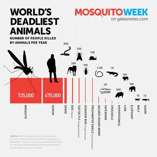 Tại sao một số người không bị muỗi đốt?