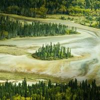 Vườn quốc gia Wood Buffalo - Canada
