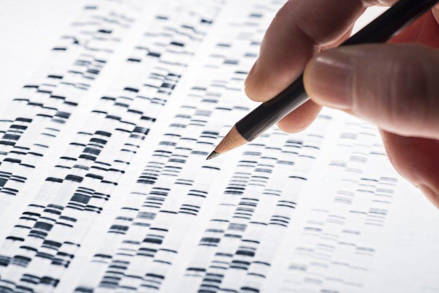 Bản đồ cơ chế di truyền biểu sinh (epigenome).