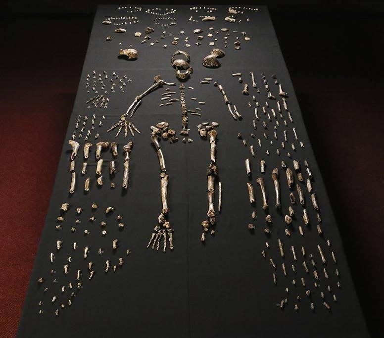 Hồi tháng 9, các nhà khoa học công bố phát hiện ra tổ tiên của một chủng người chưa từng được biết đến, có tên gọi Homo Nalendi được tìm thấy ở một hang động tại châu Phi.
