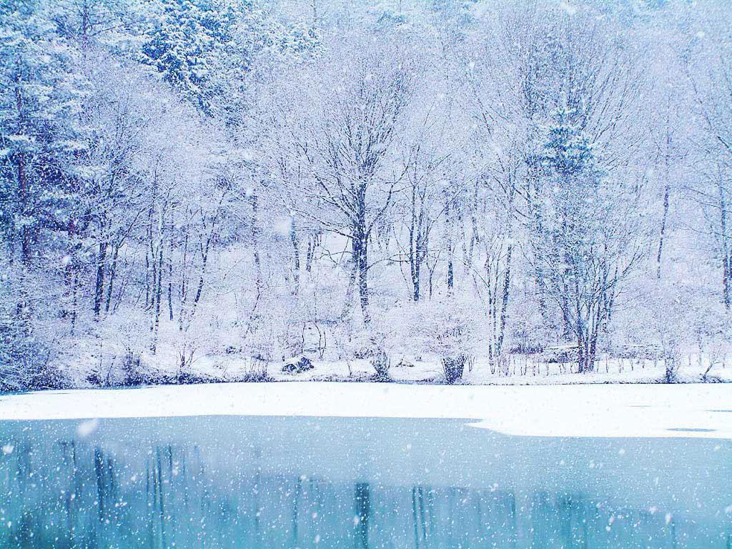 ... một màu trắng khắp các ngôi nhà, rừng cây cho ta cảm giác thật đẹp, không gian tĩnh mịch và mong muốn được một lần được chơi đùa dưới trời mưa tuyết.