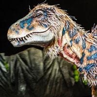 10 điều nhầm tưởng về khủng long