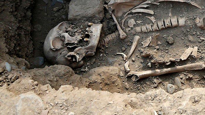 Phát hiện xương người từ thời kỳ Đồ đá mới được tìm thấy trong hố chôn tập thể.