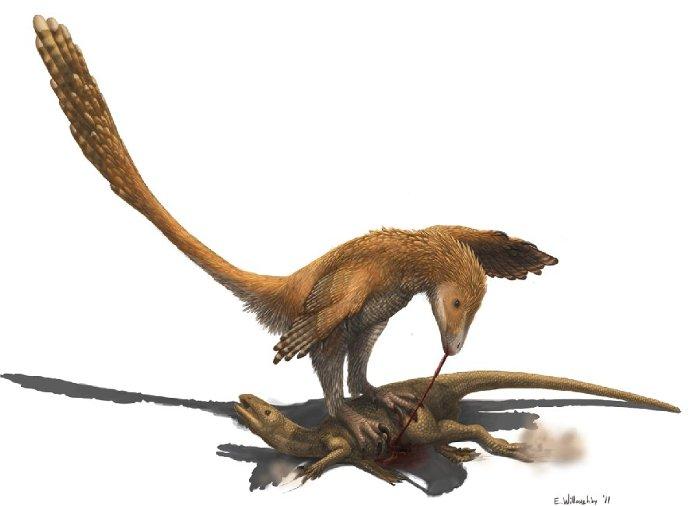 Deinonychus.