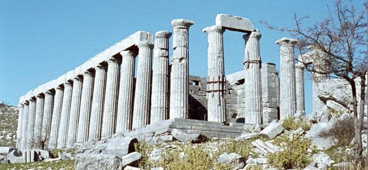 Những cột trụ đá được thiết kế theo kiểu Donric tại đền thờ Apollo được trung tu bảo quản khá tốt vì vậy mà dù đã trải qua hàng nghìn năm, vẫn còn tương đối nguyên vẹn.