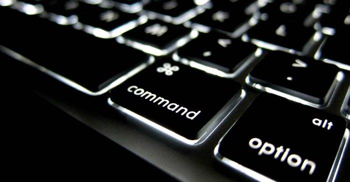 Cách bố trí bàn phím QWERTY đòi hỏi tay bạn phải hoạt động nhiều hơn 50% so với kiểu Dvorak.
