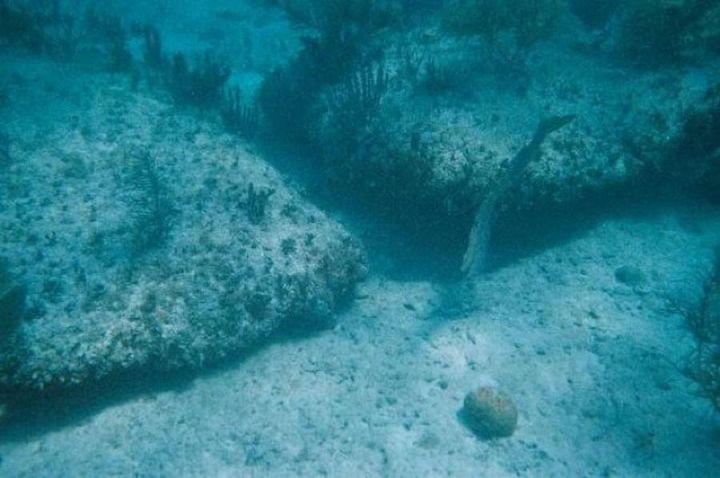 Những tảng đá này nằm sâu dưới 30 mét nước, có hình dáng khá vuông vức và được xếp song song đầy chủ ý.