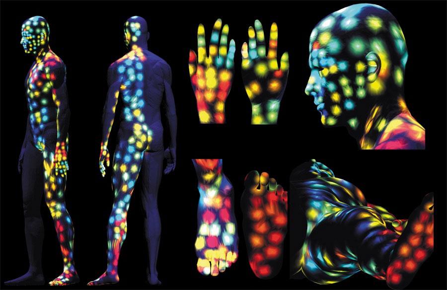 Bản đồ 3D chi tiết hé lộ vị trí vi khuẩn và hóa chất trên các vùng da của con người.