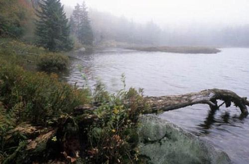 Tam giác Bennington là một vùng thuộc phía Tây Nam Vermont (Đông Bắc nước Mỹ) bao quanh là Núi Glastenbury. Đây cũng là nơi đã diễn ra hàng loạt các vụ mất tích bí ẩn trong 30 năm, từ 1920 tới 1950.