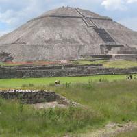 Bộ tộc Mexico cổ đại nuôi báo sư tử bằng thịt người