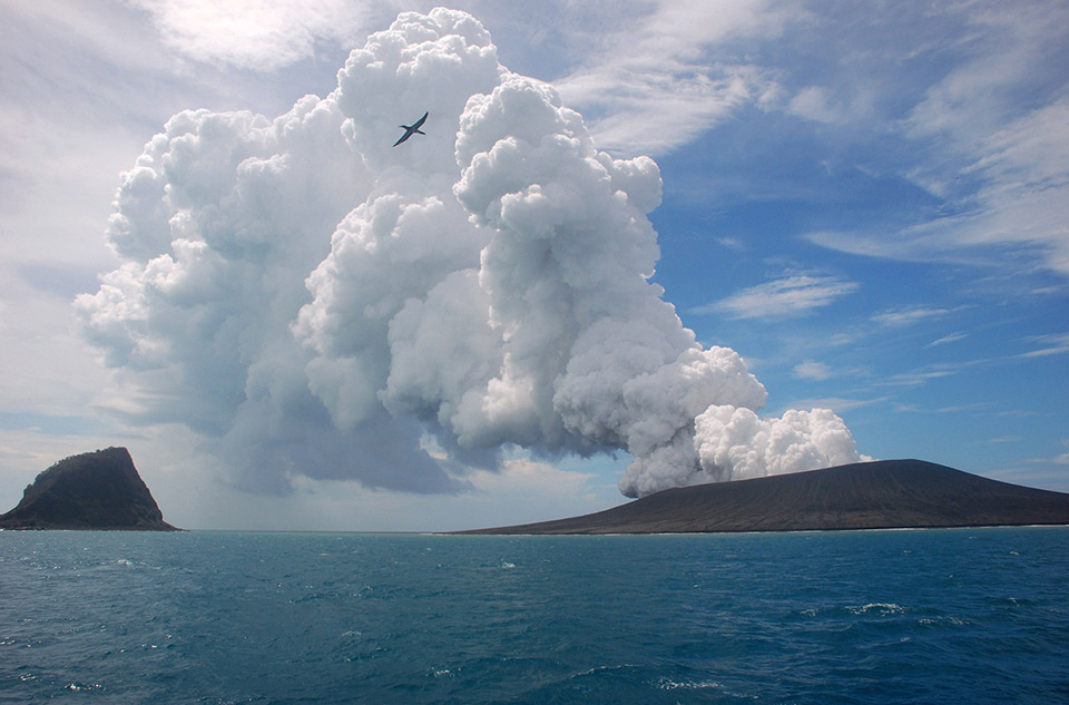 Bức ảnh được chụp vào ngày 17 tháng 01 năm 2015, từ một chiếc thuyền trên biển, cảnh một con chim chiến (frigatebird) bay lên trên luồng không khí nóng của hơi nước và gas phun trào từ núi Tonga, khoảng 65km về phía nam Thái Bình Dương, thủ đô Tonga, Nuku'alofa.