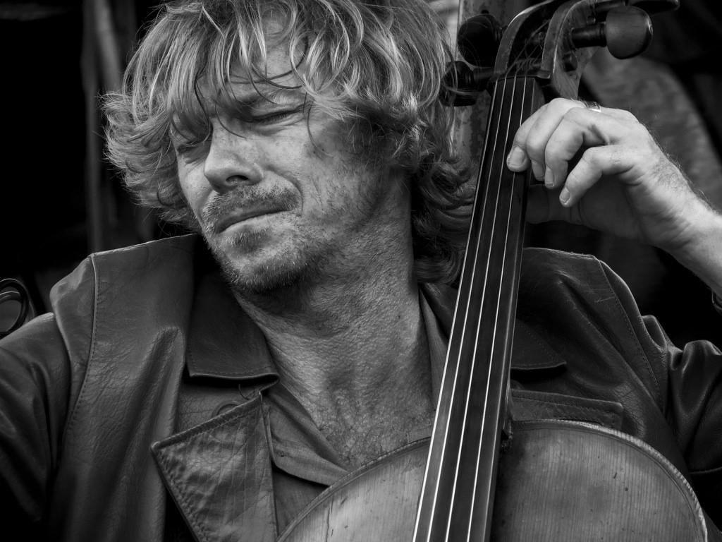 Cellist chụp bởi Rodrigo Campoz