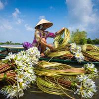 10 ảnh đẹp Việt Nam được đánh giá cao tại cuộc thi ảnh 2015