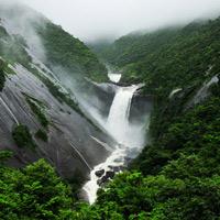 Đảo Yakushima - Di sản thiên nhiên thế giới tại Nhật Bản