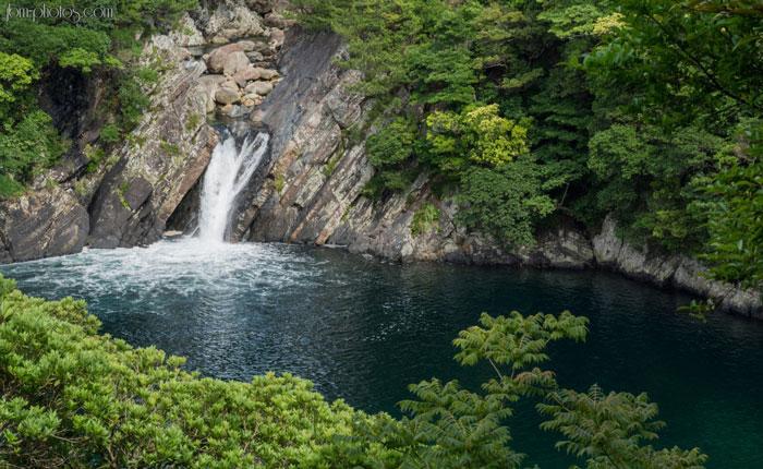 Nơi đây là một khu rừng ôn đới độc đáo, là di sản thiên nhiên thế giới đầu tiên của nước Nhật.