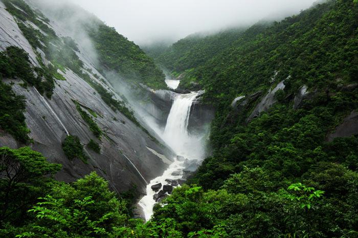 Đảo Yakushima còn có một ngọn thác rất đẹp đó là thác Toriki, thác này đổ trực tiếp xuống biển, hai bên thác là những vách đá dựng đứng, nước đổ từ thác xuống biển tạo nên cảnh tượng hũng vĩ vô cùng ấn tượng.