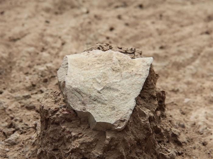 Vào tháng 5/2015, nhóm nhà nghiên cứu về nhân loại học tại Mỹ đã phát hiện 149 công cụ bằng đá tại Kenya có niên đại cách đây 3,3 triệu năm.
