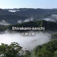 Vùng núi Shirakami Sanchi