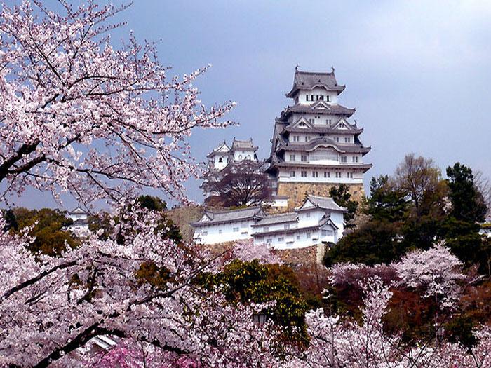 Theo thư tịch cổ Nhật Bản, đây là một thành cổ có từ năm 1346.