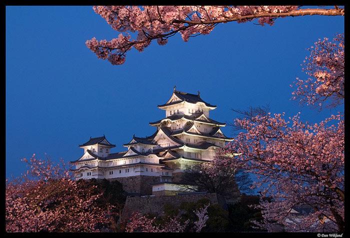 Cả lâu đài có 6 tầng lầu được dựng nên bởi những chiếc cột gỗ có đường kính lớn, chống thẳng chịu lực.