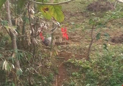 Ngoài Tuyên Quang, vật thể này còn được phát hiện tại xã Tân Đồng, huyện Trấn Yên (Yên Bái).