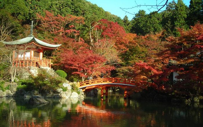 Tại Kyoto có 14 đền đài được Unesco công nhận là di sản văn hóa thế giới.