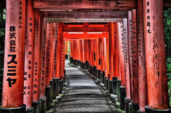 Ước tính hơn một nửa số chùa miếu, đền đài, dinh thự cổ kính của Nhật Bản tập trung ở Kyoto.