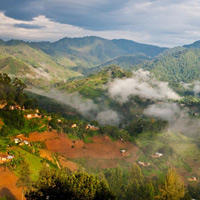 Vườn quốc gia cấm Bwindi