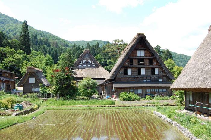 Kiến trúc gassho-zukuni là một phong cách kiến trúc mà các mái nhà được xây bằng mái tranh giống như các bàn tay tham gia cầu nguyện.