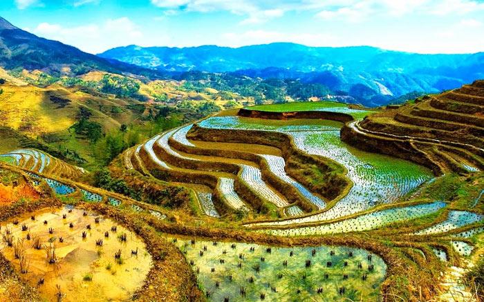 Các ruộng bậc thang này được tổ tiên những người dân bản địa sinh sống tại đây tạo nên