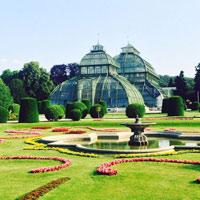 Cung điện và vườn Schonbrunn