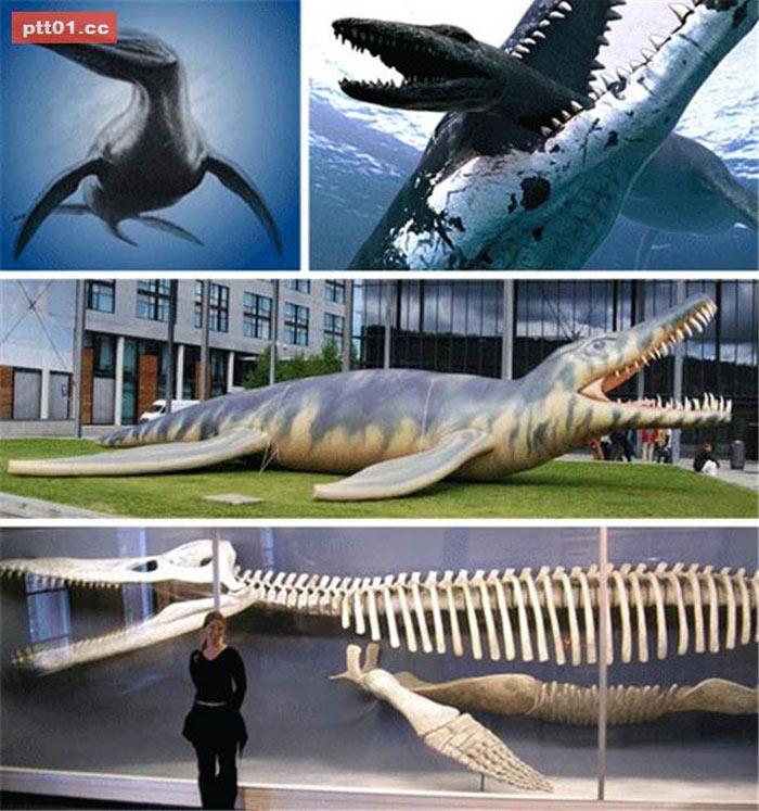 Thằn lằn gò là một chi của loài bò sát biển tuyệt chủng. Chúng ăn cá, mực và các loài bò sát biển khác. Sinh sống vào kỷ Jura, không giống những loài thằn lằn khác, có răng hình tam giác.