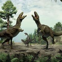 Vũ điệu gợi tình của loài khủng long ăn thịt